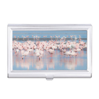 Africa, Namibia, Walvis Bay Business Card Holder