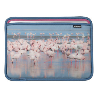 Africa, Namibia, Walvis Bay MacBook Sleeve
