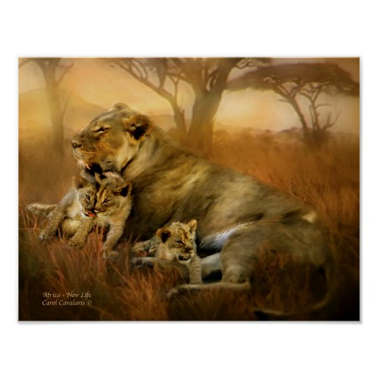 Africa - New Life Art Poster/Print Poster