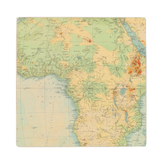 Africa Physical 10506 Wood Coaster