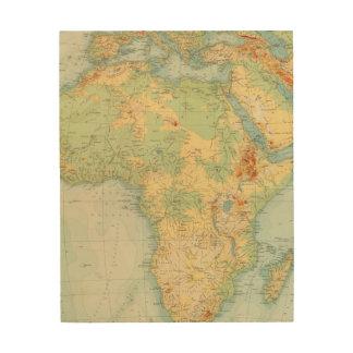 Africa Physical 10506 Wood Wall Art