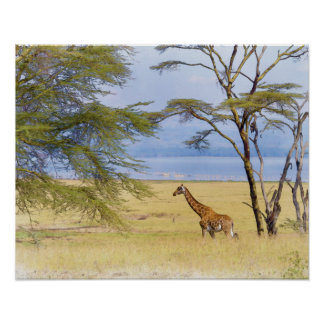 Africa Safari Giraffe Watercolor Painting Poster