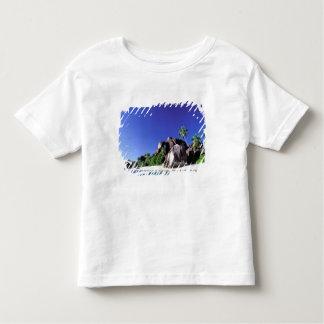 Africa, Seychelles, La Digue Island. Granite 3 Toddler T-Shirt