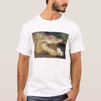 Africa, South Africa Nile crocodile T-Shirt