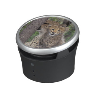Africa, South Africa, Phinda Preserve. Cheetah Bluetooth Speaker