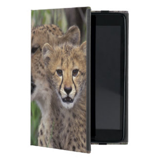 Africa, South Africa, Phinda Preserve. Cheetah Cover For iPad Mini