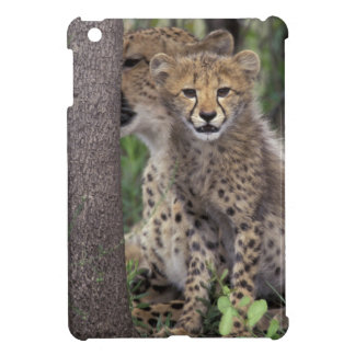 Africa, South Africa, Phinda Preserve. Cheetah Cover For The iPad Mini