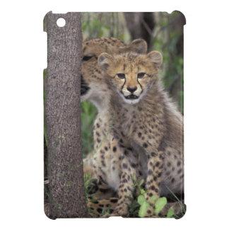 Africa, South Africa, Phinda Preserve. Cheetah iPad Mini Cases