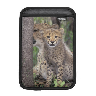 Africa, South Africa, Phinda Preserve. Cheetah iPad Mini Sleeve