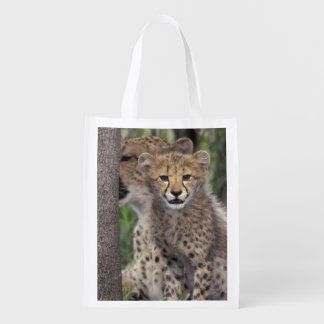 Africa, South Africa, Phinda Preserve. Cheetah Reusable Grocery Bag
