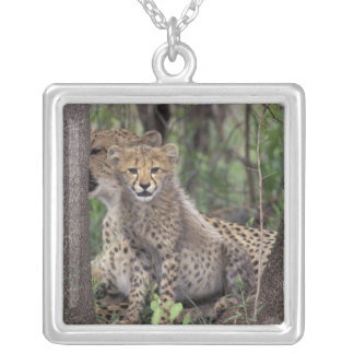 Africa, South Africa, Phinda Preserve. Cheetah Silver Plated Necklace