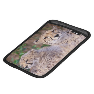 Africa, South Africa, Tswalu Reserve. Cheetahs iPad Mini Sleeve