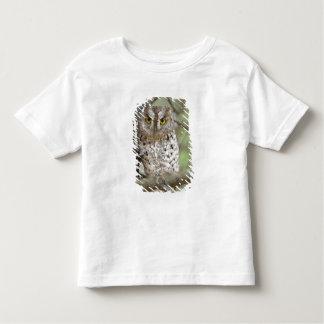 Africa. Tanzania. African Scops Owl at Tarangire 2 T-shirt