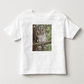 Africa. Tanzania. African Scops Owl at Tarangire 2 Toddler T-Shirt