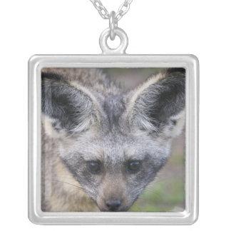 Africa. Tanzania. Bat-Eared Fox at Ndutu in the Silver Plated Necklace