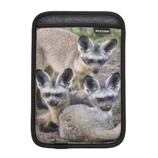 Africa. Tanzania. Bat-Eared Foxes at Ndutu in iPad Mini Sleeve
