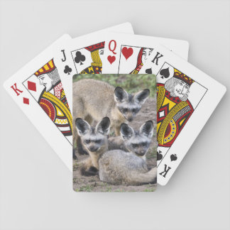 Africa. Tanzania. Bat-Eared Foxes at Ndutu in Playing Cards