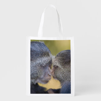 Africa. Tanzania. Blue Monkey mother with young Reusable Grocery Bag