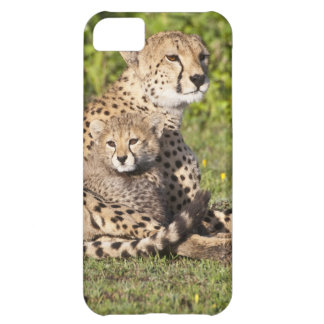 Africa. Tanzania. Cheetah mother and cubs 2 iPhone 5C Case