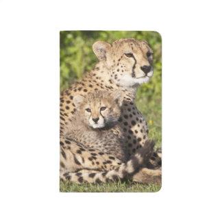 Africa. Tanzania. Cheetah mother and cubs 2 Journal
