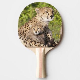 Africa. Tanzania. Cheetah mother and cubs 2 Ping Pong Paddle
