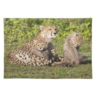 Africa. Tanzania. Cheetah mother and cubs 2 Placemat