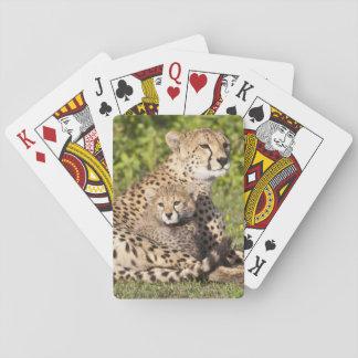 Africa. Tanzania. Cheetah mother and cubs 2 Playing Cards