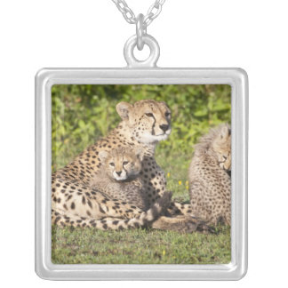 Africa. Tanzania. Cheetah mother and cubs 2 Silver Plated Necklace