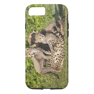 Africa. Tanzania. Cheetah mother and cubs iPhone 8/7 Case