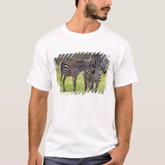 Africa. Tanzania. Common Zebra mother and baby T-Shirt