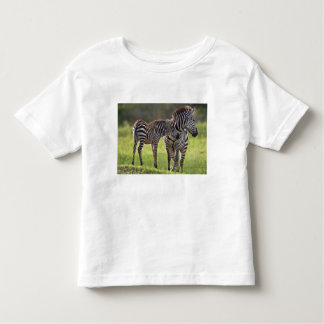 Africa. Tanzania. Common Zebra mother and baby Toddler T-Shirt
