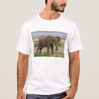 Africa. Tanzania. Elephant at Lake Manyara NP. T-Shirt