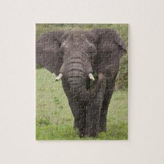 Africa. Tanzania. Elephant at Ngorongoro Crater, Jigsaw Puzzle