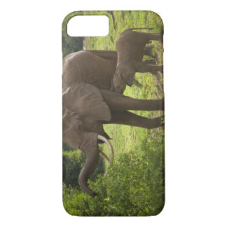 Africa. Tanzania. Elephant mother and calf at 2 iPhone 7 Case