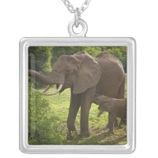 Africa. Tanzania. Elephant mother and calf at 2 Silver Plated Necklace