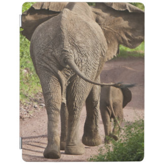 Africa. Tanzania. Elephant mother and calf at iPad Cover