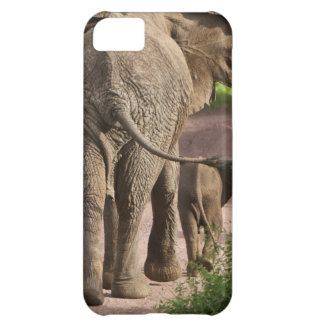 Africa. Tanzania. Elephant mother and calf at iPhone 5C Case