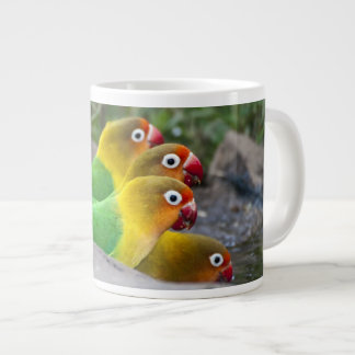 Africa. Tanzania. Fischer's Lovebirds drinking Giant Coffee Mug