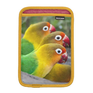 Africa. Tanzania. Fischer's Lovebirds drinking iPad Mini Sleeve