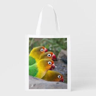 Africa. Tanzania. Fischer's Lovebirds drinking Reusable Grocery Bag