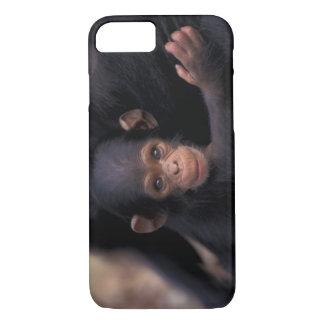 Africa, Tanzania, Gombe Nat'l Park,  Flirt, a iPhone 8/7 Case