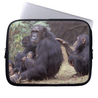Africa, Tanzania, Gombe NP Infant female Laptop Sleeve
