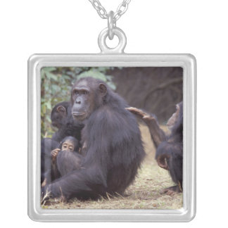 Africa, Tanzania, Gombe NP Infant female Silver Plated Necklace
