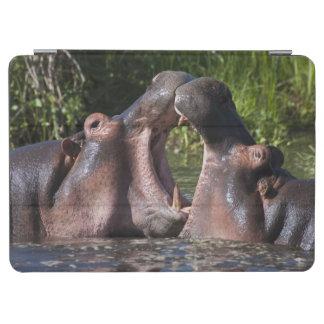 Africa. Tanzania. Hippopotamus sparring at the iPad Air Cover