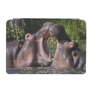 Africa. Tanzania. Hippopotamus sparring at the iPad Mini Cover