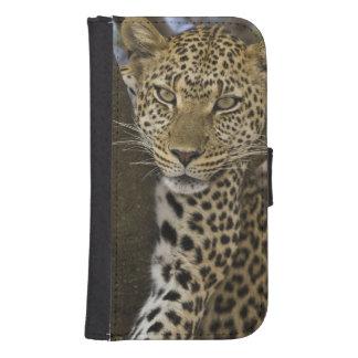 Africa. Tanzania. Leopard in tree at Serengeti Samsung S4 Wallet Case