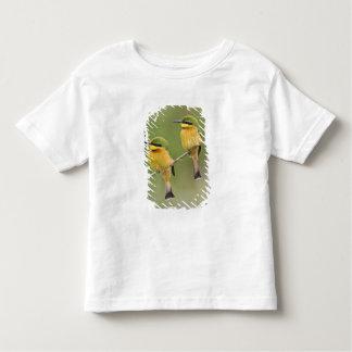 Africa. Tanzania. Little Bee Eaters at Manyara Toddler T-Shirt