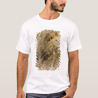 Africa. Tanzania. Male Lion at Ngorongoro T-Shirt
