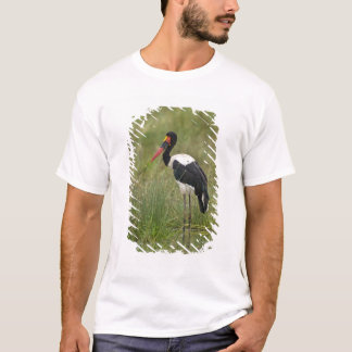 Africa. Tanzania. Male Saddle-billed Stork at T-Shirt