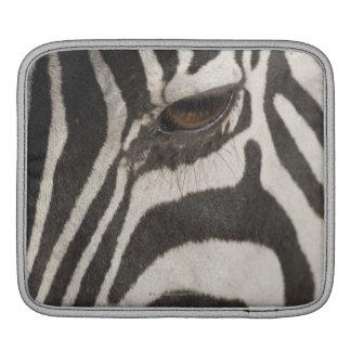 Africa, Tanzania, Ngorongoro Conservation Area iPad Sleeve
